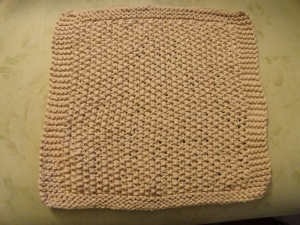 Palm Beach Dishcloth